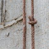 figure corde du double huit de noeud Image libre de droits