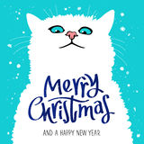 Figure cute cat. Merry Christmas. Figure cute cat. Quote Merry Christmas and a happy new year. The trend calligraphy. Great holiday gift card. Vector Royalty Free Stock Photo