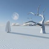 Figure dans le désert Images stock