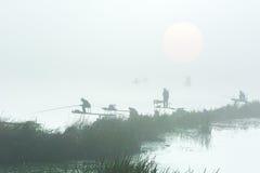 Figure dei pescatori nella nebbia Immagini Stock Libere da Diritti