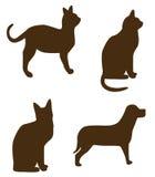Figure del cane del gatto Immagini Stock Libere da Diritti
