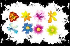 Figure di vettore del fiore Immagini Stock