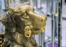 Figure en bronze d'un chien avec un os dans la bouche photo stock