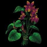 Figure fialok. Figure violets on a black background. Vector illustration Royalty Free Stock Photo