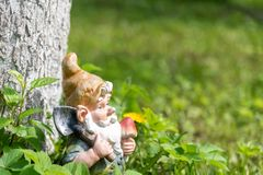 The figure of a garden gnome with a shovel at a tree in the green grass. Close-up. Copy space.  royalty free stock photos