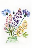 Figure illustration of a bouquet of meadow wildflowers in a vase stock photography