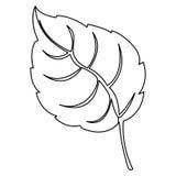 Figure leaf contrast icon Stock Photo