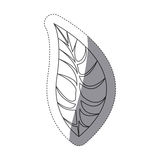 Figure leaf of plant icon Royalty Free Stock Photos