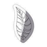 Figure leaf of plant icon. Illustration design image Royalty Free Stock Photos