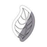 Figure leaf of plant icon Stock Photos