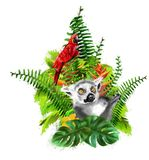 Lemur and red parrot on the background of tropical plants. royalty free stock image