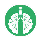 Figure lungs of branches icon image Stock Photography
