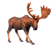 Figure of a moose. Beautiful collectible figure of an elk on white background Royalty Free Stock Photo