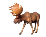 Figure of a moose Royalty Free Stock Images
