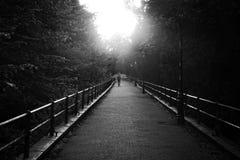 Figure o passeio na distância Fotografia de Stock Royalty Free