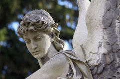 Figure Of Angel Royalty Free Stock Images