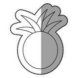 Figure pineapple fruit icon stock. Illustration design Royalty Free Stock Image