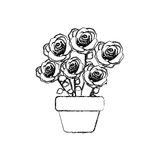 Figure roses inside flower pot icon Stock Photography