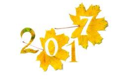 2017 figure scolpite dalle foglie di acero gialle Fotografie Stock