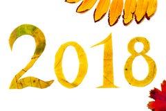 2018 figure scolpite dalle foglie di acero su fondo bianco Fotografie Stock