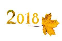 2018 figure scolpite dalle foglie di acero su fondo bianco Fotografia Stock Libera da Diritti