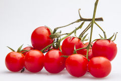 Figure series of small tomato figure 04. Studio shot ingredients series of small tomato figure Stock Photography