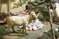 Figure of a sheep for the Nativity isolated royalty free stock photos