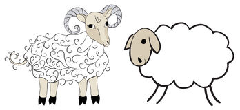 Figure sheep and sheep. On white background Stock Photos