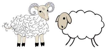 Figure sheep and sheep Stock Photos