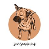 Figure skating dog on a white background. Skech free hand royalty free illustration