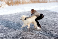 Figure skating woman with dog Samoyed Stock Photography