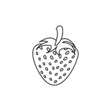 Figure strawberry fruit icon stock. Illustration design Stock Photography