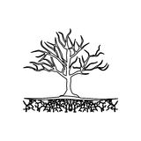 Figure tree without leaves icon. Illustraction design image Royalty Free Stock Photography