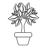 Figure tree with leaves inside flower pot. Illustraction design Stock Photography