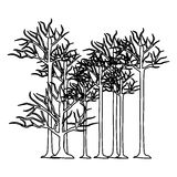 Figure trees without leaves icon. Illustraction design image Royalty Free Stock Photography