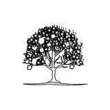 Figure trees with some leaves and flowers icon. Illustraction design image Royalty Free Stock Photos