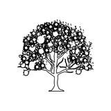 Figure trees with some leaves icon. Illustraction design Royalty Free Stock Photo