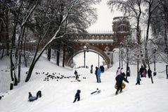 Figured桥梁看法在Tsaritsyno公园 人们享受冬季体育 库存照片