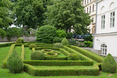 Figured cutting of bushes in Prague Royalty Free Stock Photo