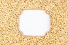 Figured frame made of rope with  barley  grains  lying on a whit Royalty Free Stock Images