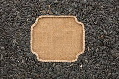 Figured frame made of rope with sunflower seeds on sackcloth Stock Images