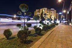 Figuredly klippte gröna buskar i nattneonljuset längs vägen royaltyfri foto