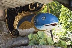 Figurehead Fish Royalty Free Stock Photo