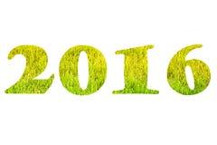 Figuren 2016 over groen gras op het gazon Selectieve nadruk Shal Royalty-vrije Stock Foto