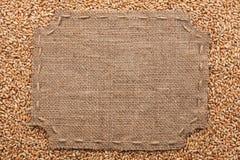 Figurerad ram med säckväv och häftklammer med stället för din text Royaltyfri Foto