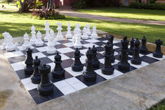 Figures for game in chess on  nature Stock Images