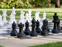 Figures pour le jeu dans les échecs sur la nature Images libres de droits