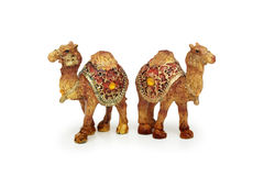 Figures of two camels isolated Stock Image
