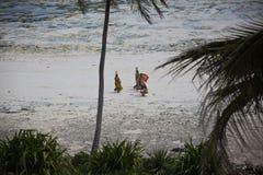Figures walking on the beach in Michamwi-Pingwe Zanzibar, Royalty Free Stock Photos