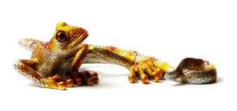 Figurilla del lagarto aislado en el fondo blanco Foto de archivo